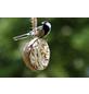Vogelfutter, Rosinen / Erdnuss / Sonnenblumenkerne / Mehlwurm, 2000 g-Thumbnail