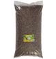 GARTENKRONE Vogelfutter »Sonnenblumenkerne«, Sonnenblumenkerne, 20 kg-Thumbnail