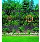 PROMADINO Wagenrad, BxH: 50 x 14 cm, Kiefernholz, honig-Thumbnail