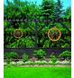PROMADINO Wagenrad, BxH: 90 x 22 cm, Kiefernholz, honig-Thumbnail