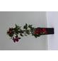 GARTENKRONE Waldrebe Clematis  »Rouge Cardinal«-Thumbnail