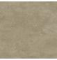 RENOVO Wand- und Bodenfliese »Stamford«, beige, matt, rektifiziert-Thumbnail