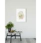 KOMAR Wandbild, BxH: 40 x 50 cm, bunt-Thumbnail