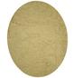 wofi® Wandleuchte goldfarben 6 W, 1-flammig, inkl. Leuchtmittel in warmweiß-Thumbnail