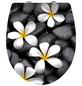 WENKO WC-Sitz »Bloom« aus Duroplast,  oval mit Softclose-Funktion-Thumbnail