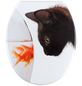 WENKO WC-Sitz »Fish & Cat«, Tiere-Thumbnail