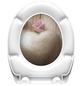 SCHÜTTE WC-Sitz »Romantic«, Duroplast, oval, mit Softclose-Funktion-Thumbnail