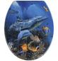 WENKO WC-Sitz »Sea Life«, Duroplast, oval-Thumbnail