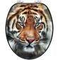CORNAT WC-Sitz »TIGER«, MDF, D-Form-Thumbnail