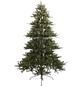 Everlands Weihnachtsbaum, baumförmig, Höhe: 210 cm-Thumbnail
