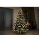 Evergreen Weihnachtsbaum »Fichte Frost«, Höhe: 150 cm, grün/weiß, beleuchtet-Thumbnail