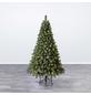 Evergreen Weihnachtsbaum »Oxford Kiefer «, Höhe: 180 cm, grün, beleuchtet-Thumbnail