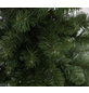 Evergreen Weihnachtsbaum »Oxford Kiefer «, Höhe: 210 cm, grün-Thumbnail