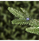 Evergreen Weihnachtsbaum »Sherwood Fichte«, Höhe: 210 cm, grün, beleuchtet-Thumbnail