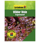 GARTENKRONE Wilder Wein, Parthenocissus quinquefolia »Engelmannii«, creme, winterhart-Thumbnail