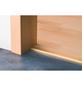 CARL PRINZ Winkelprofil Alu gold 1000 x 24,5 x 10 mm-Thumbnail