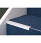 CARL PRINZ Winkelprofil Alu silber 1000 x 24,5 x 20 mm-Thumbnail
