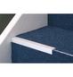 CARL PRINZ Winkelprofil Alu silber 2700 x 24,5 x 20 mm-Thumbnail
