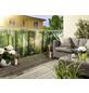 FLORAWORLD Zaunelement »Comfort«, PVC, LxH: 200 x 180 cm-Thumbnail