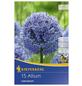 KIEPENKERL Zierlauch caeruleum Allium-Thumbnail