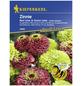 KIEPENKERL Zinnie, Zinnia angustifolia, Samen, Blüte: mehrfarbig-Thumbnail