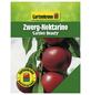 GARTENKRONE Zwerg-Nektarine, Prunus nuciperisca »Garden Beauty«, Früchte: süß, zum Verzehr geeignet-Thumbnail