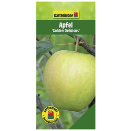 GARTENKRONE Apfel, Malus domestica »Golden Delicious«, Früchte: süß, zum Verzehr geeignet