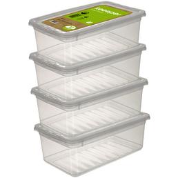 KEEEPER Aufbewahrungsbox »Bea«, BxHxL: 33 x 12 x 19,5 cm, Kunststoff