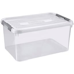 CURVER Aufbewahrungsbox, BxHxL: 60 x 29 x 40 cm, Kunststoff