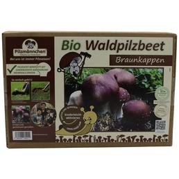 Bio Waldpilzbeet Braunkappe, für den Garten