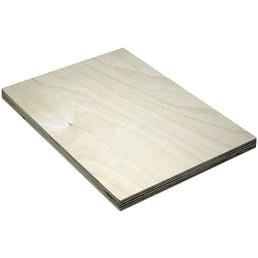 Birke Multiplex-Platte, 1250x2500x15 mm, Natur