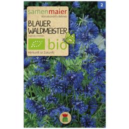 SAMEN MAIER Blauer Waldmeister