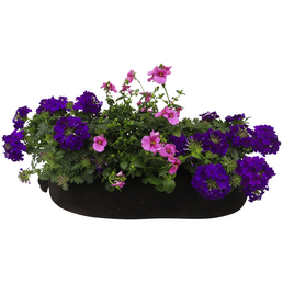 BLUMIXX Blumenbag Sommer 30 cm, Blüte: gemischt