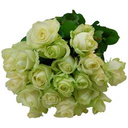 Blumenstrauß mit Rosen in weiß, Ø 35 cm