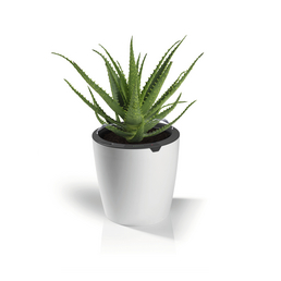 Blumentopf, ØxH: 17 cm x 16 cm, weiss/grau