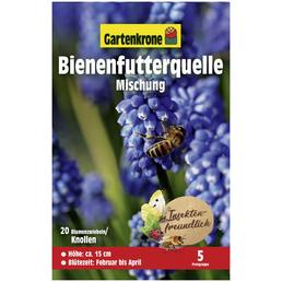 GARTENKRONE Blumenzwiebel »Gartenkrone Bienenfutterquelle«
