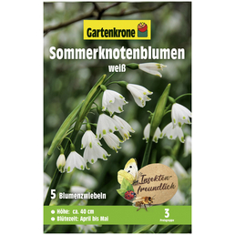 GARTENKRONE Blumenzwiebel »Gartenkrone Leucojum Aestivum«