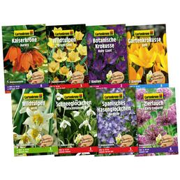 GARTENKRONE Blumenzwiebelmix Set Nützlingsnahrung