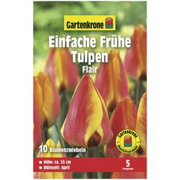 GARTENKRONE Blumenzwiebeln Einfache Frühe Tulpe, Tulipa X hybrida »Flair«, Blütenfarbe: rot