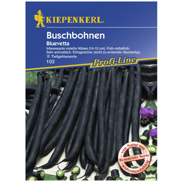KIEPENKERL Buschbohne vulgaris var. nanus Phaseolus »Bluevetta«