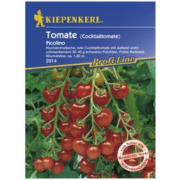 KIEPENKERL Cocktail-Tomate lycopersicum Solanum »Picolino«