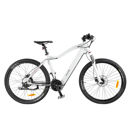 "ALLEGRO E-Bike »E-MTB Invisible Dialm«, 27,5 "", 30-Gang, 10.4 Ah"