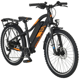 "REX E-Bike Mountainbike, 24 "", 7-Gang, 10.4 Ah"
