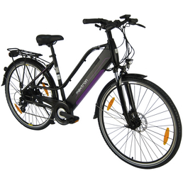 "MAXTRON E-Bike »MT-12«, 28 "", 8-Gang, 11.6 Ah"