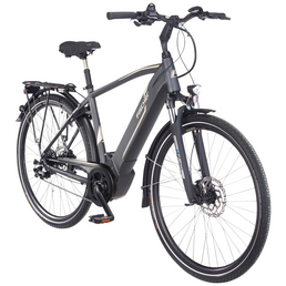 """FISCHER FAHRRAEDER E-Bike »Trekking«, 28 """", 10-Gang, 11.6Ah"""