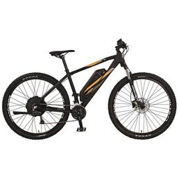 "REX E-Mountainbike »Graveler e9.5«, 29"", 27-Gang, 10.4 Ah"