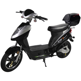 DIDI THURAU E-Roller »City-Star, 40 km/h«, 45 km/h (max.), silberfarben - schwarz
