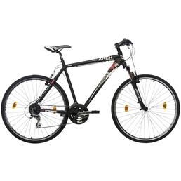 TRETWERK Fahrrad »Arch 1.0«, 28 Zoll, Herren