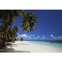 KOMAR Foto-Papiertapete »Maldives«, Breite 388 cm, inkl. Kleister