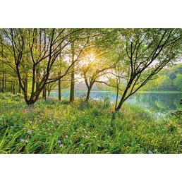 KOMAR Foto-Papiertapete »Spring Lake«, Breite 368 cm, inkl. Kleister